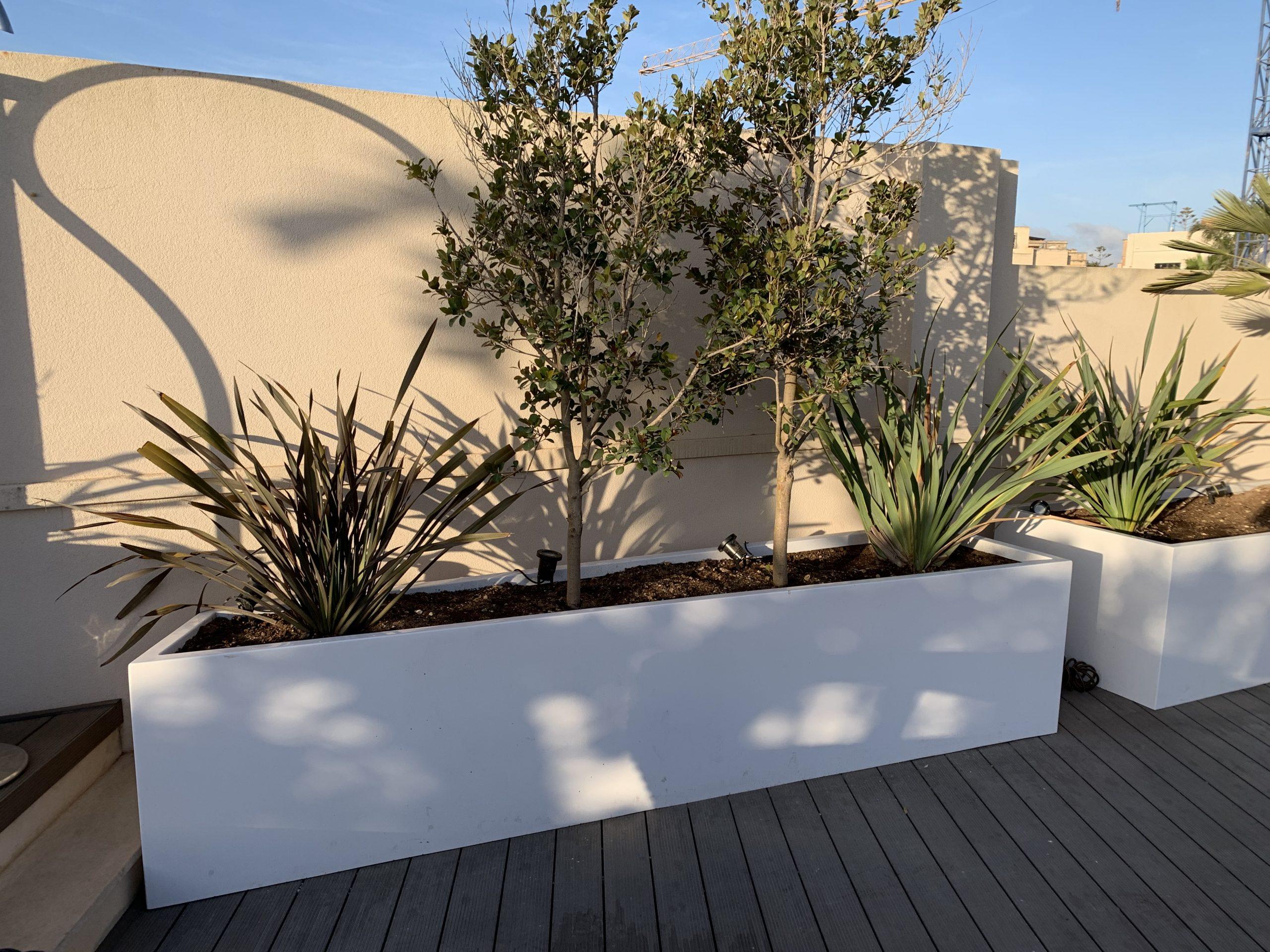 Planter / Trough
